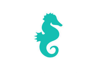 The Seahorses group